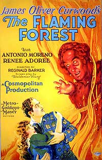 THE FLAMING FOREST (1926), courtesy Richard C. Allen