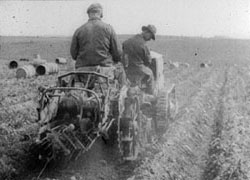 The How and Why of Spuds (1920), National Archives Collection